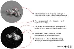 diagram-v4